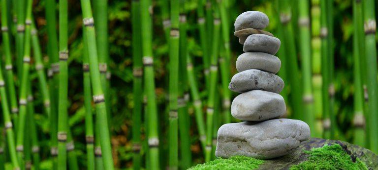 paciencia-antes-la-inmediatez-del-ahora-blog-portada