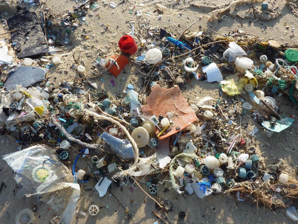 Me-ayudas-a-cuidar-los-oceanos-blog-basura